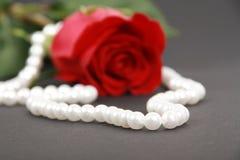 项链珍珠红色上升了 免版税库存照片