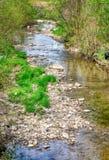 顺流与岩石银行的一条小平安的小河 免版税库存照片