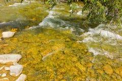 顺流冲在金摇摄小河的冷水在加拿大 免版税图库摄影