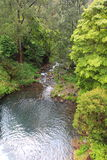 顺流Jenolan的河 库存照片