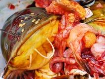 顽固的人停止的eggson表面鱼 免版税库存照片