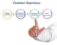顾客经验过程 库存照片