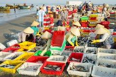 头顿,越南- 2016年7月03日:工作者将被卖的排序鱼在长的海氏的,头顿,越南捕鱼港口附近的Th海 免版税库存图片