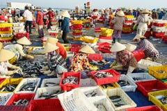头顿,越南- 2016年7月03日:工作者将被卖的排序鱼在长的海氏,头顿,越南的捕鱼港口 库存照片