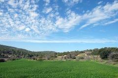 领域、小山和美丽的天空在犹太,以色列 免版税库存照片