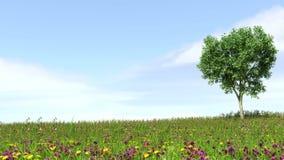 领域、树和蓝天 免版税库存图片