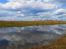 领域、水坑和树在距离 库存照片