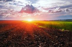 领域为种植与云彩做准备在日落 免版税库存图片