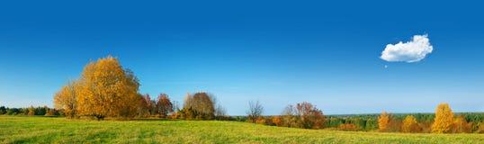 领域全景在秋季天 免版税图库摄影