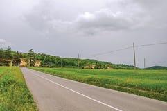 领域全景用麦子、空的路和一座城堡在一个森林中间在一多云天 库存照片