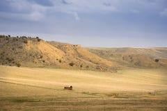 领域农村场面的老土气棚子 库存照片