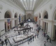 领域博物馆芝加哥 库存图片