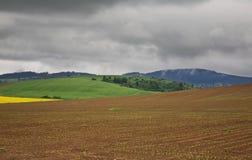领域和小山在Zilina附近 斯洛伐克 库存照片