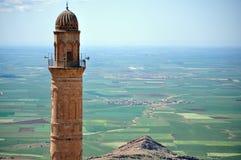 领域和尖塔mardin的 免版税库存照片