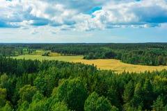 领域和森林在Ã…土地,芬兰 免版税图库摄影