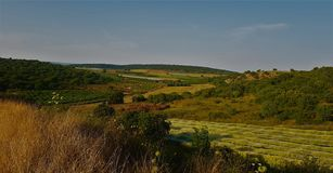 领域和森林小山环境美化 免版税库存照片