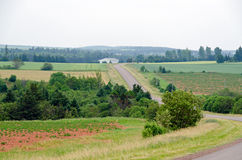 领域和森林看法 免版税库存图片