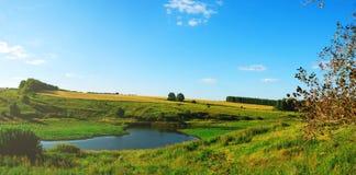 领域和绿色草甸美丽的景色  免版税库存图片