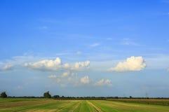 领域和草甸在收获以后 免版税库存照片