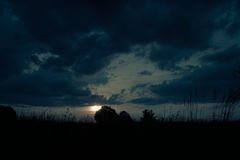 领域和草甸风景  免版税库存照片