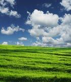 领域和clouds_001 免版税库存图片