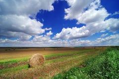 领域在大麦收获以后的6月 秸杆劳斯在大麦的被收获的领域的在罗马尼亚 库存图片