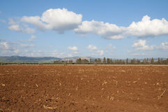 领域在西内盖夫加利利 库存照片