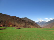 领域在西藏中国 库存图片