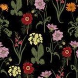 领域夏天花 无缝的背景 bossies 布料,墙纸 绽放 花卉模式纹理 皇族释放例证