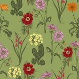 领域夏天花 无缝的背景 bossies 布料,墙纸 绽放 花卉模式纹理 库存例证