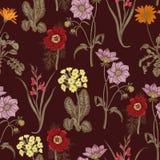 领域夏天花 背景无缝的向量 bossies 布料,墙纸 绽放 花卉模式纹理 向量例证