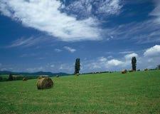 领域天空和干草 免版税图库摄影
