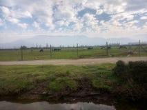 领域照片的风景牧场地 库存图片