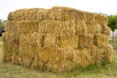 领域的一个大干草堆 免版税库存照片