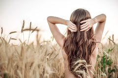 领域的一个女孩调整她的头发,赤裸躯干,有长的头发的一名深色的妇女 麦田,想法关心 免版税库存图片