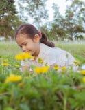 领域的一个逗人喜爱的女孩 库存照片