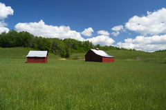 领域的两个红色谷仓 免版税库存照片