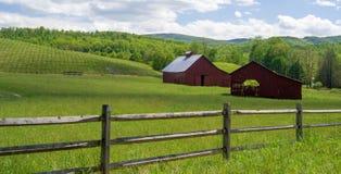 领域的两个红色谷仓 库存照片
