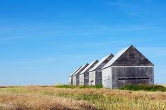 领域的五个谷仓 免版税图库摄影