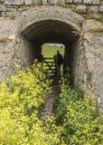 从领域的人输入的隧道 免版税库存图片