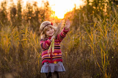 领域的小女孩与日落 库存照片