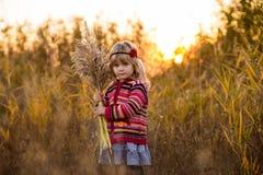 领域的小女孩与日落 免版税库存图片