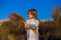 领域的小女孩与芦苇 库存照片