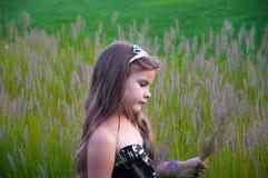 领域的小女孩收集花,日落,冠,公主,哀伤 免版税图库摄影