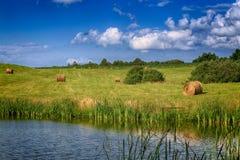领域的干草堆与池塘 免版税图库摄影