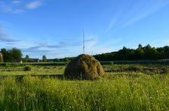 领域的干草堆在奥涅加河俄罗斯附近 免版税库存图片