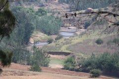 领域的河 库存照片