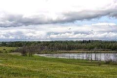 领域的湖 免版税库存照片