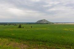 从领域的看法在一座唯一山Yuraktau 图库摄影