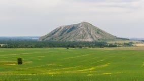 从领域的看法在一座唯一山Yuraktau 免版税图库摄影